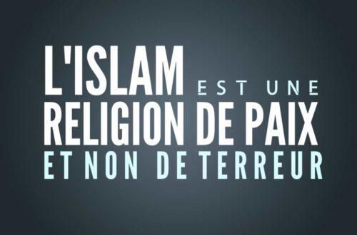 Article : Le terrorisme n'est pas l'Islam (slam poésie)