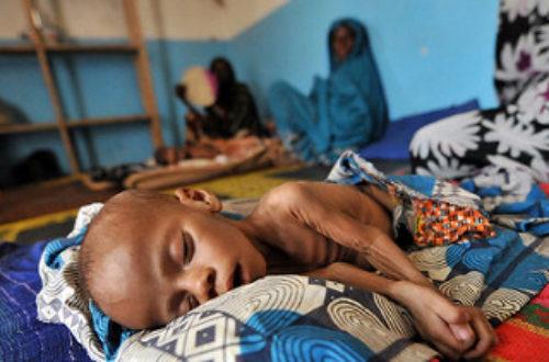 Article : La malnutrition, un phénomène dévastateur de la couche social tchadienne.