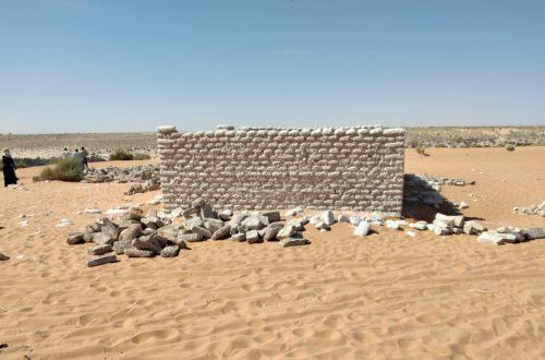 Article : La réalité du monde rural au Tchad : Bour, dans le Nord Kanem, confronté à l'absence d'infrastructures sanitaires
